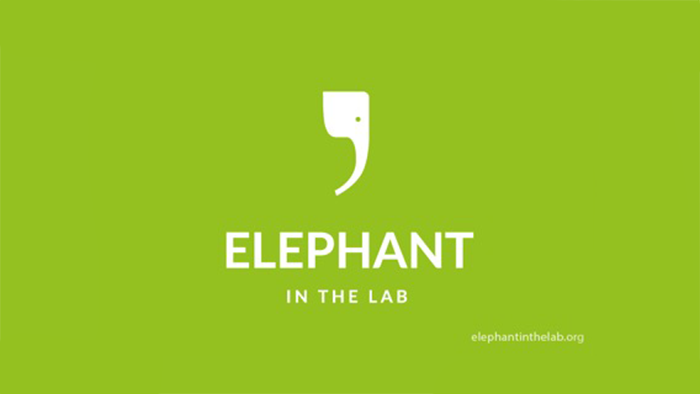 Blog journal Elephant in the Lab