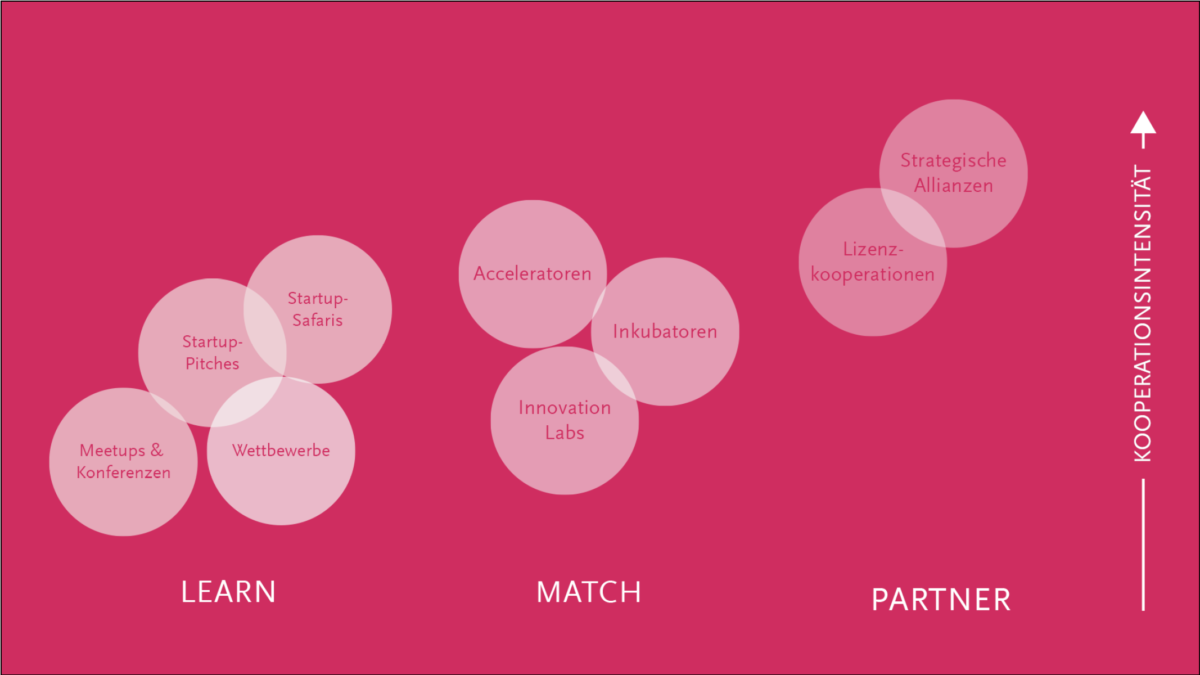 Schema des Learn.Match.Partner.-Modells