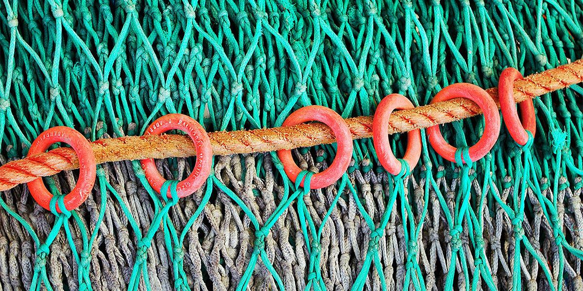 Fishnet: Symbolising internet connectivity