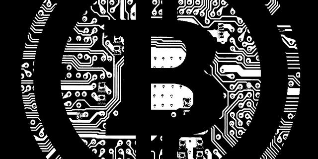Bitcoin Plutokratie